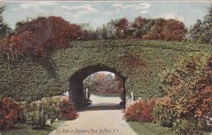 New York Buffalo Ivy Arch In Delaware Park 1908