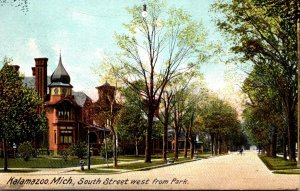Michigan Kalamazoo South Street Looking West From Park 1908