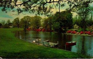 New York Long Island Shelter Island Dickerson's Pond