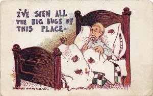 F26/ Insect Bug Pest Comic Postcard 1907 Judson North Dakota Bed Bugs 24