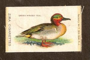 TURN OF CENTURY CIGARETTE SILK-GREEN WINGED TEAL - ZIRA