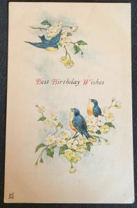 "Postcard Unused ""Best Birthday Wishes"" Birds/Flowers LB"