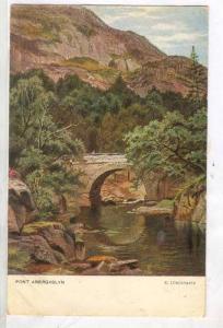 Pont Abergaslyn, Bridge, Gwynedd, North Wales, UK, 1900-1910s