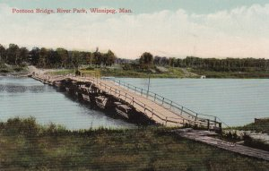 WINNIPEG , Manitoba , Canada , 00-10s : Pontoon Bridge , River Park