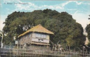 Philippines Typical Native Hut & Mango Tree Curteich