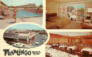 Autos Pool Flamingo Motor Hotel Tucson Arizona 1960s Postcard interior 12486