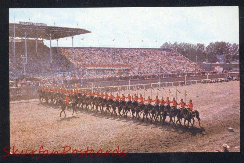 CALGARY ALBERTA CANADA STAMPEDE ROYAL CANADIAN MOUNTED POLICE POSTCARD