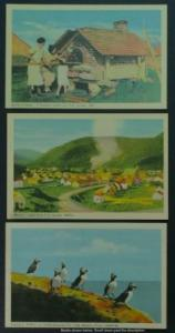 Quebec: Gaspé, Boneventure Island lot of 3PECO c1950s