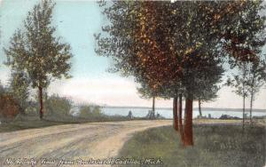Cadillac Michigan~Lake View from Boulevard~Path Along Lake~1911 Postcard