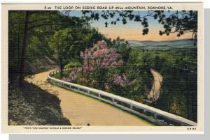 Roanoke, Virginia/VA Postcard,Mill Mountain/Loop, Near Mint!