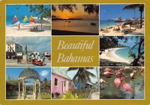 The Bahamas multiviews Beaches Turquoise seas Pink Flamingos