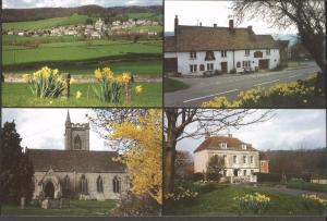 Postcard ULEY Gloucestershire Multiview