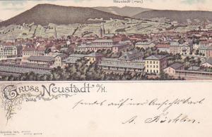Gruss aus Neustadt a/H. , Germany , PU-1896