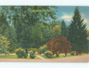 Linen PARK SCENE Honesdale Pennsylvania PA c8784