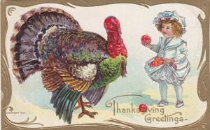 THANKSGIVING, 1910; Greetings, Toddler trying to feed turkey apples