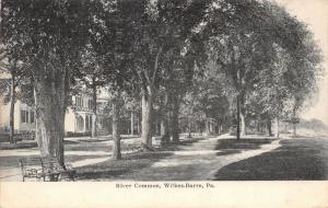 Wilkes-Barre Pennsylvania~River Common Path & Bench~Homes Across Street~1905 B&W