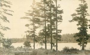 C-1910 Pine fringed shores Wausau Wisconsin Marathon RPPC Photo Postcard 3486