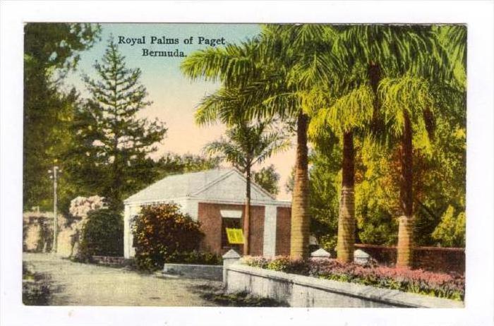 Royal Palms of Paget, Bermuda , 00-10s