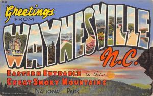 Waynesville NC Large Letter Linen~Monument~Great Smoky Mountain Park 1949 PC