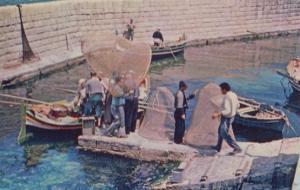 Maltese Fishermen at St Pauls Bay Boats Malta Fishing Postcard