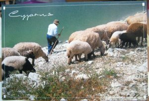 Cyprus Shepherd and sheep by the Dam - unposted