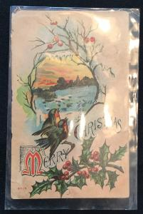 Unused Postcard Christmas Advertising-Farm Progress Magazine Birds  LB