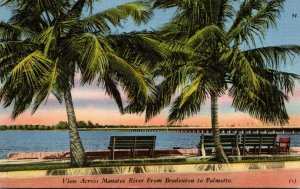 Florida Bradenton View Across Manatee River From Bradenton 1956