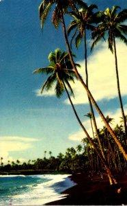 Hawaii Puna Black Sands Beach