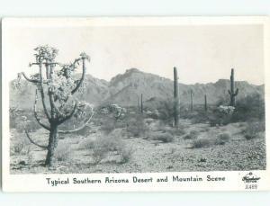 Pre-1950 rppc NICE VIEW State Of Arizona AZ W0417