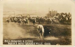 RPPC Postcard Bulldogging a Steer Border Days Grangeville Idaho Rodeo