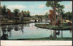 New York ~ A View in Brookside Cemetery WATERTOWN Vintage pm1907 - Divided Back