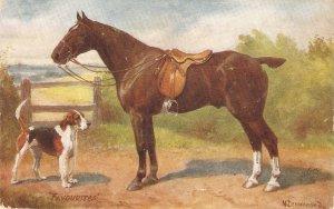 Norah Drummond.  Favourites Tuck Oiette Man's Best Friend Ser.PC # 9561
