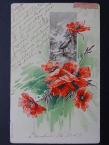 Poppy Postcard: POPPIES c1903 UB by A. & M.B. No.189 - Inc Donation to R.B.L.