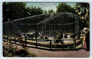 OAKLAND, CA California ~ Idora Park BEAR PIT  c1910s  Alameda County  Postcard