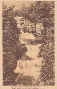 New York Monticello One Of The Numerous Water Falls  Albertype