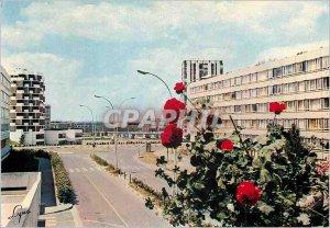 Modern Postcard Argenteuil (Val d'Oise) Street of Berionne