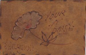 Your a Daisy , SHELBURNE , Ontario , Canada , PU-1906