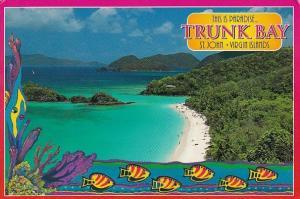 Virgin Islands St John Trunk Bay