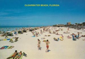 Florida Clearwater Beach Sun Bathers