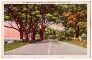 Old Spanish Trail, Mississippi Gulf Coast