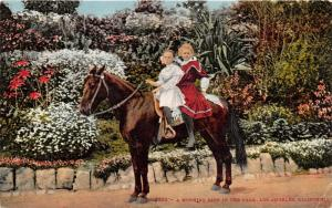 Los Angeles California~Little Girls on Horse @ Park~Colorful Flowers~1910 PC