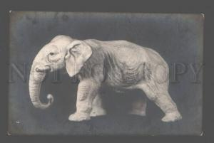 083810 Happy ELEPHANT Figure Vintage PHOTO Russian PC