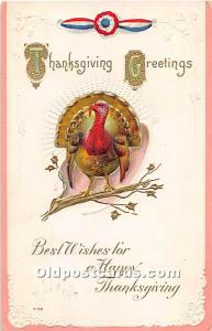Thanksgiving Greeting Postcard 1916