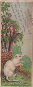 TC,Book Marker, Owl in Tree, Rat Standing on Hind Legs,1880-90s; 3 Merchants Row
