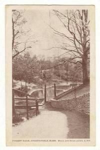 Duck and Swan Ponds, Forest Park, Springfield, Massachusetts, PU-1913