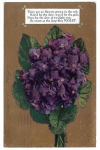 Motto Poem 1910 Postcard Flowers Deep Blue Violets on Gold