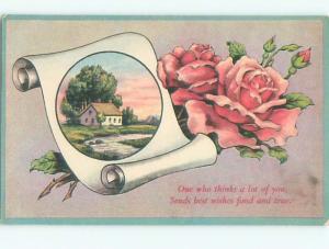 Divided-Back BEAUTIFUL FLOWERS SCENE Great Postcard AA2258
