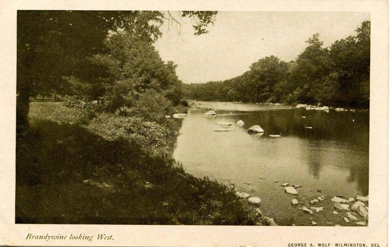 DE - Brandywine Creek looking West