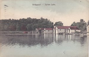BRIDGEPORT, Michigan; Sylvan Lake, PU-1910
