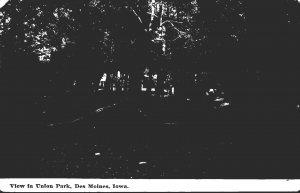 Iowa Des Moines View In Union Park 1910